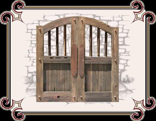 Барная дверь двухсторонняя купить