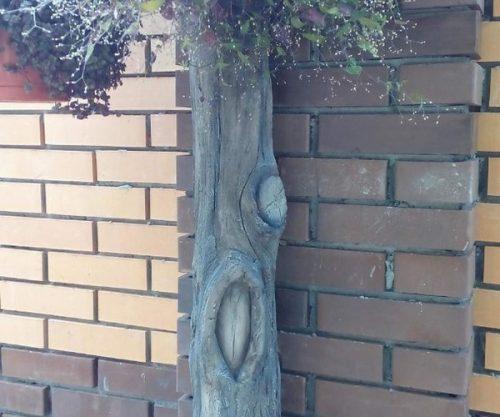 Пни из цемента
